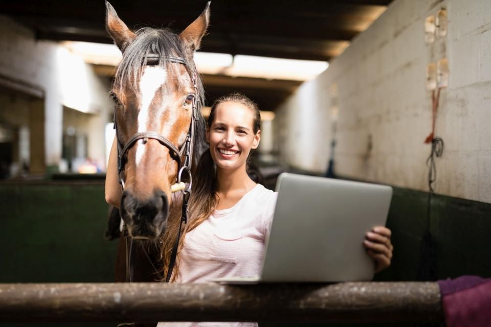 Algemene paardenkennis